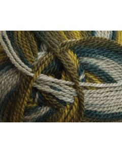 Ashford Tekapo 12 Ply - Evergreen - 732
